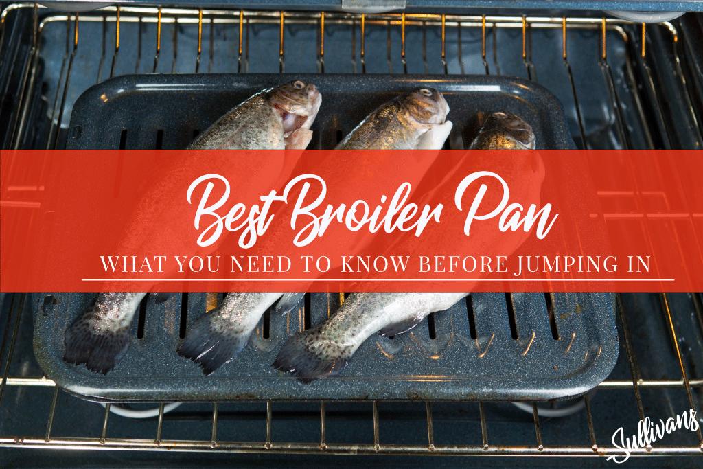 Best-Broiler-Pan